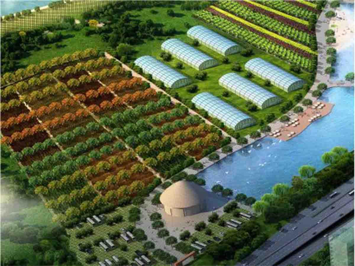 现代农业园建设服务