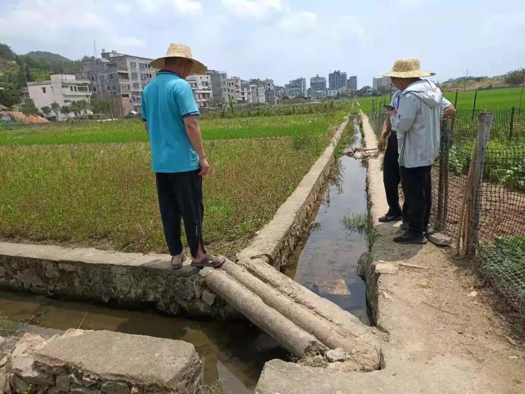 五华高标项目纪实丨助力高标准农田建设 为乡村振兴蓄势赋能
