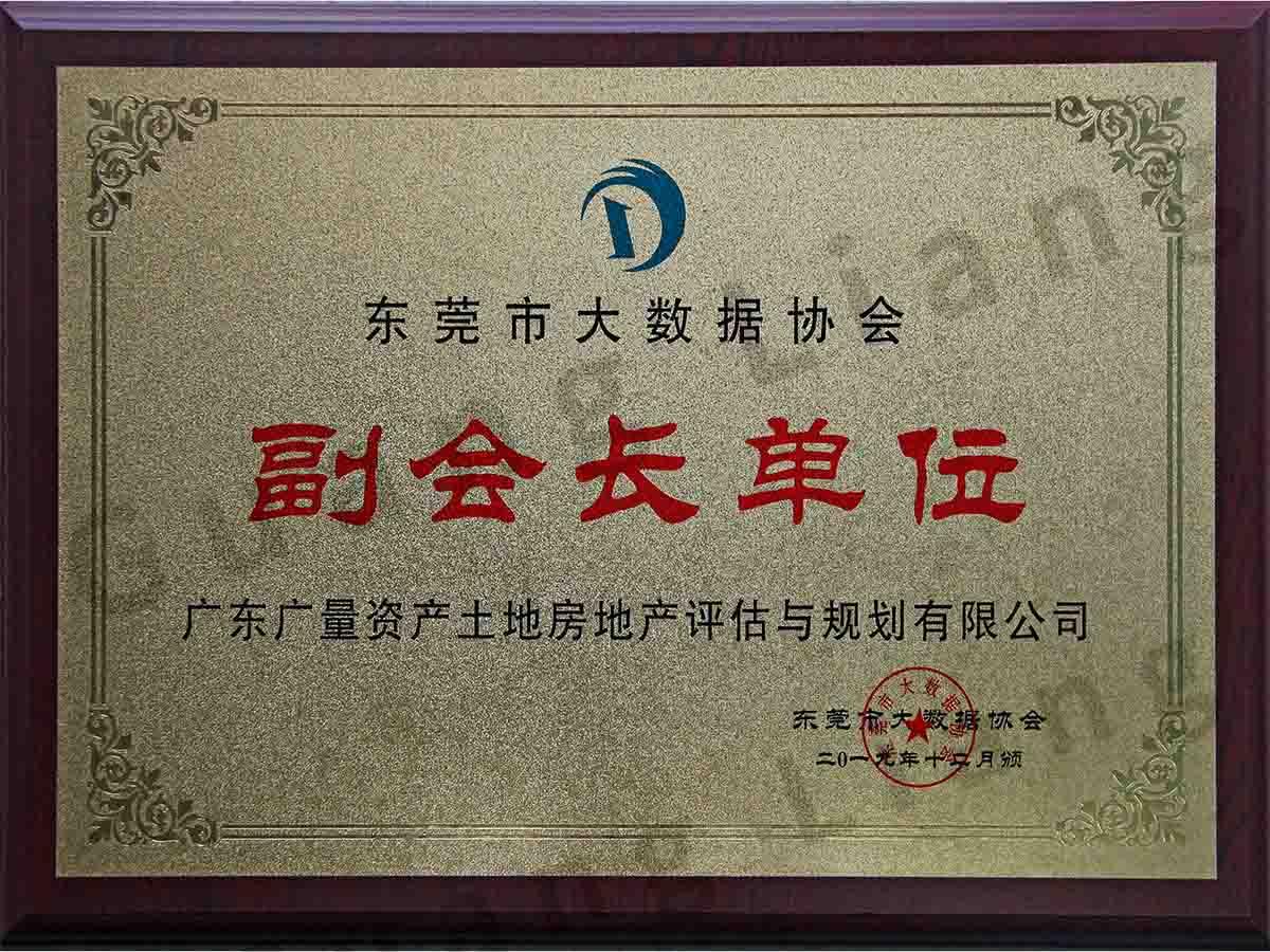 东莞市大数据协会副会长单位