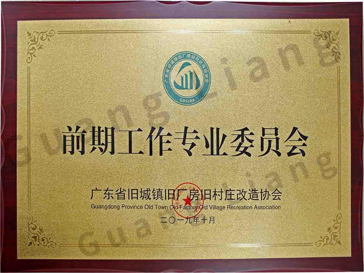 广东省旧城镇旧厂房旧村庄改造协会前期工作专业委员会主任委员