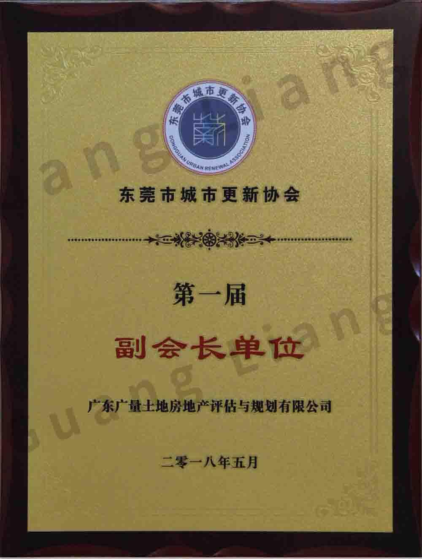 东莞市城市更新协会副会长单位